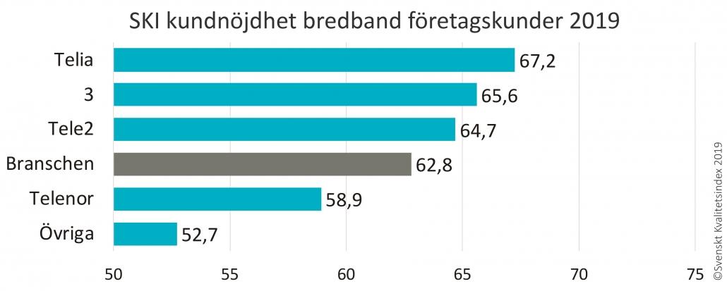 SKI bredband företagskunder 2019